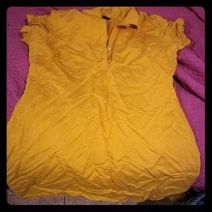Lane Bryant shirtdress